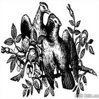 中国古典纹饰创作图片库中国美术图案库(3)