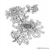 创作线描画稿吉祥图案中国美术图案库(2)