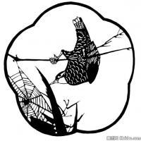古代飞禽鸟类线描拓片库艺术家创作库中国美术图案库(2)