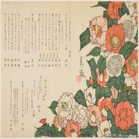日本册页(10)近现代高清图片