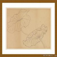 工笔线稿(2)古人手绘画稿线描研究图片高清图