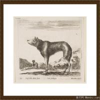 (4)素描动物高清图片高清素描动物资料