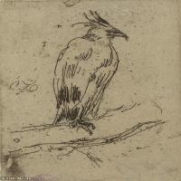 动物素描(2)高清晰高档图片素材专业下载