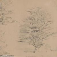 (4)花卉植物素描高档喷绘印刷欧美图片资源文件