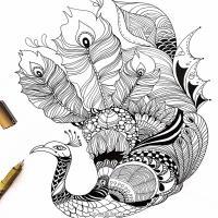 鹿喜喜黑白手绘插画集