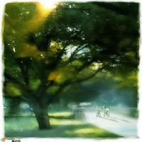 Yang Tae Jong浪漫唯美单车水彩画