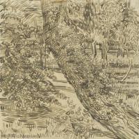 【印刷级】SMR181046135-著名荷兰后印象派画家文森特梵高Vincent van Gogh手稿素描作品图片-Ivy Trees at Asylum-45M-3500X4535