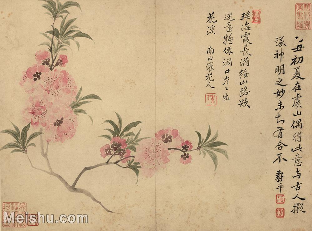 【印刷级】GH6062747古画恽寿平-花鸟图册8开(4)册页图片-86M-6027X4465.jpg