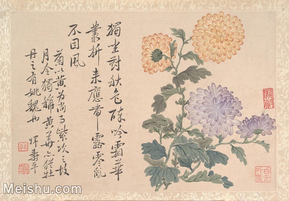 【印刷级】GH6080464古画花卉鲜花鸟清代恽寿平菊花卉植物小品图片-31M-4000X2782.jpg
