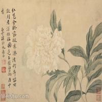 【印刷级】GH6062749古画恽寿平-花鸟图册8开(6)册页图片-90M-6027X4465
