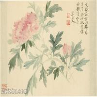 【印刷級】GH6063783古畫花卉冊-(10)冊頁圖片-52M-5167X3580