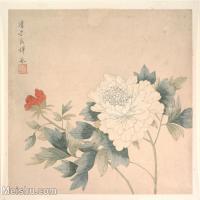 【印刷級】GH6063258古畫清代惲冰女史植物牡丹花卉冊頁圖片-41M-4000X3612