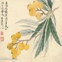 【印刷級】GH6080812古畫樹木植物清-惲壽平惲壽平-甌香館寫生冊-枇杷小品圖片-103M-6711X5406