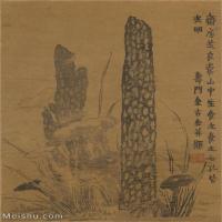 【印刷级】GH6062220古画金农-书画图册(6)册页图片-135M-5267X7882_57165255