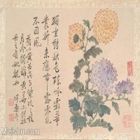 【印刷級】GH6080464古畫花卉鮮花鳥清代惲壽平菊花卉植物小品圖片-31M-4000X2782