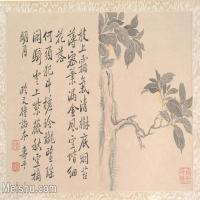 【印刷級】GH6080833古畫樹木植物清代惲壽平植物樹木書畫小品圖片-32M-4000X2838
