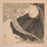【印刷级】GH6040250古画植物清-张敔 花卉图册页图片-17M-4032X3152_56908696