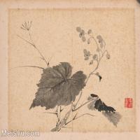 【印刷级】GH6040251古画植物清-张敔 花卉图册页图片-16M-3936X3120_56909351