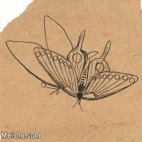 【印刷级】JXD6193893近现代国画草虫昆虫-齐白石全集图片-23M-