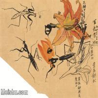 【印刷级】JXD6193965近现代国画草虫昆虫-齐白石全集图片-29M-