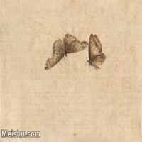 【印刷级】JXD6193896近现代国画草虫昆虫-齐白石全集图片-19M-