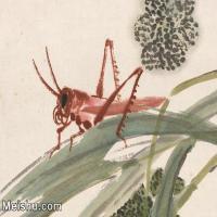【印刷级】JXD6194119近现代国画草虫昆虫-齐白石全集图片-29M-