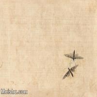 【印刷级】JXD6193887近现代国画草虫昆虫-齐白石全集图片-22M-
