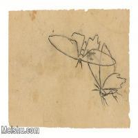 【印刷级】JXD6193895近现代国画草虫昆虫-齐白石全集图片-47M-