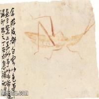 【印刷级】JXD6194118近现代国画草虫昆虫-齐白石全集图片-19M-