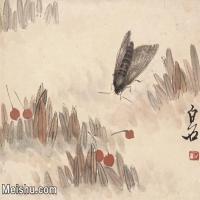 【印刷级】JXD6193898近现代国画草虫昆虫-齐白石全集图片-20M-