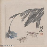 【超顶级】JXD6190088近现代国画齐白石作品花卉草虫--水墨-30x42.5-80x113-花卉-草虫-蛾册页图片-142M-