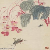 【印刷级】JXD6190452近现代国画齐白石作品拍照-20开--水墨-30x41.5-35x49-花卉-草虫-蚂蚱册页图片-32M-