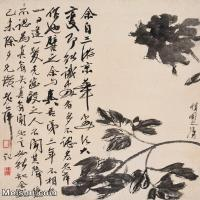 【打印级】JXD6192816近现代国画齐白石作品小品图片-26M-