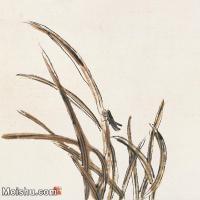 【欣赏级】JXD6192667近现代国画齐白石作品小品图片-7M-