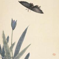 【欣赏级】JXD6192730近现代国画齐白石作品小品图片-10M-
