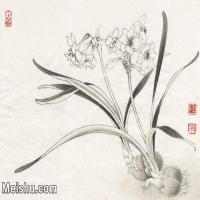 【印刷级】JXD7080774近现代国画《临于非�墨水仙》 花鸟植物小品图片-37M-