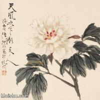 【印刷级】JXD6160976近现代陆抑非 (136)国画花鸟植物小品图片-59M-