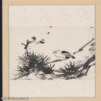 【超顶级】JXD5260066近现代国画松林小鸟图轴-李苦禅国画水墨立轴-30x49.5-55x91-花鸟-松树-245M-7392X