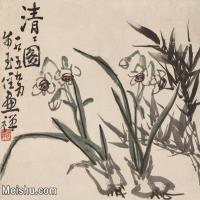 【印刷级】JXD5265187近现代国画名家清清图-李苦禅国画水墨小品-34.5x30-45x39-45.2x39.3-花卉-花草-兰花花鸟植物图片-95M-