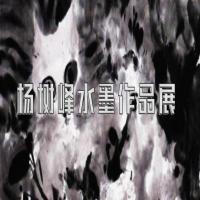 杨树峰抽象水墨展