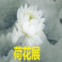中国首届商品画网络画展-荷花展