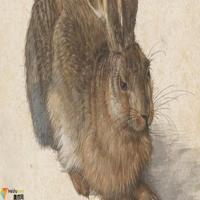 德国画家阿尔布雷特,丢勒AlbrechtDurer-油画展