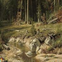 风景画家希施金-油画展(二)