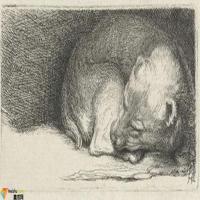荷兰(现实主义画家)伦勃朗Rembrandt-素描展