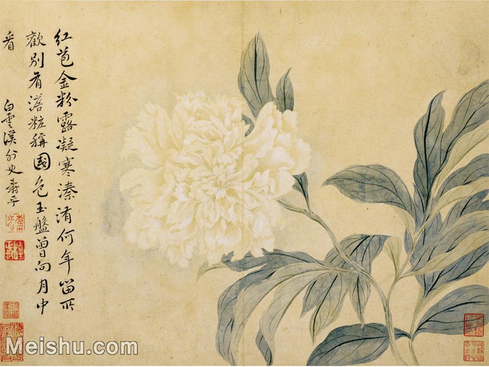【印刷级】GH6060135古画花鸟花卉鲜花册页图片-55M-3580X2686.jpg