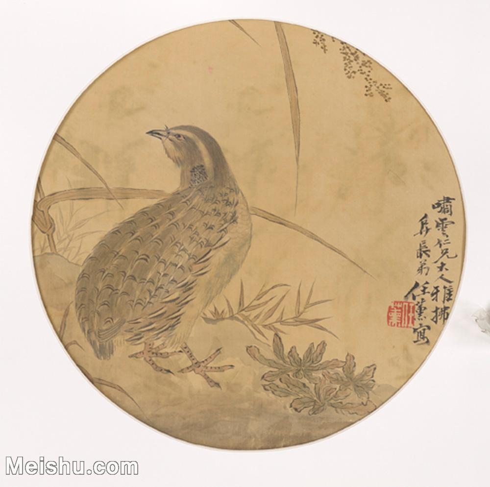 【欣赏级】GH6080220古画花卉鲜花鸟小品图片-12M-2064X2049.jpg