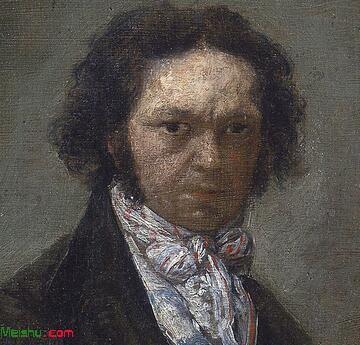 弗朗西斯科·何塞·德·戈雅-卢西恩