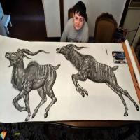 天才画家,2岁画画,15岁已经办展6次,随手一涂就是生物大片