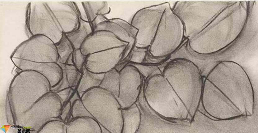 毕加索Pablo Picasso-素描展(一)