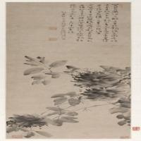 徐渭水墨牡丹图轴-明朝-山水
